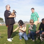 Our Italian Greyhounds meetup. One of many meetups we have in our park.