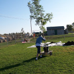 Tree Project 06