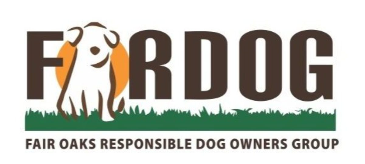 FORDOG: SUPPORTING PHOENIX DOG PARK